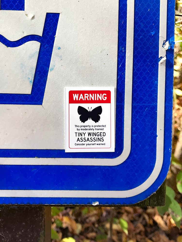 Warning – This property is protected by moderately trained Tiny Winged Assassins. Consider yourself warned.
