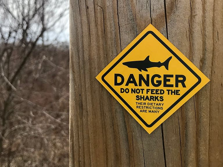 Danger – Do Not Feed the Sharks. Their Dietary Restrictions are Many.